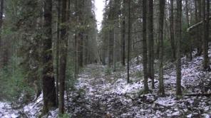 priroda-kraja-1_1